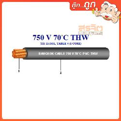 BCC THW-010-RE.100